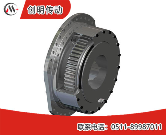 DC Series Spherical-Roller Drum-Shape Gear Coupling